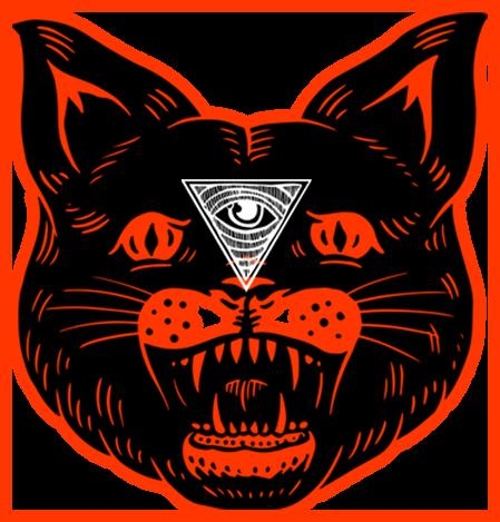 black_cat_orange_eye_smaller