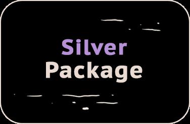 box_silver_sponsor